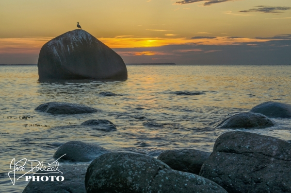 Seaside in Lohme with stones and sunset, Germany